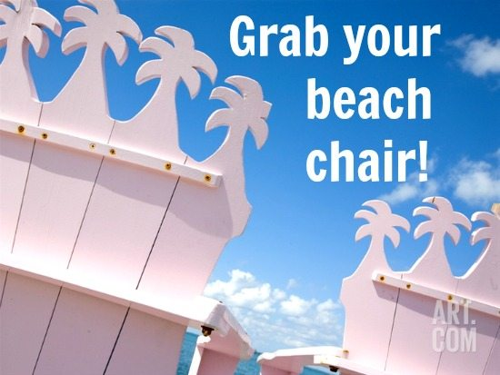 Adirondack Palm Beach Chair Print