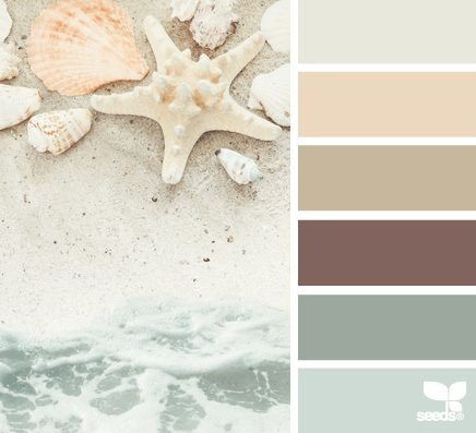shore colors