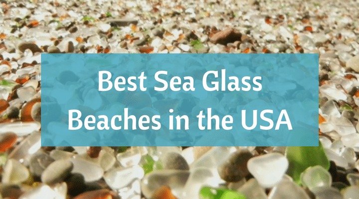 Sea Gl Beaches In The United States