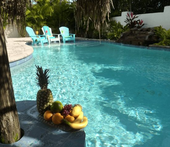 Backyard Tropical Pool Paradise