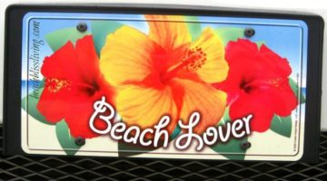 Wheel Appeal with Vanity Beach License Plates and Frames