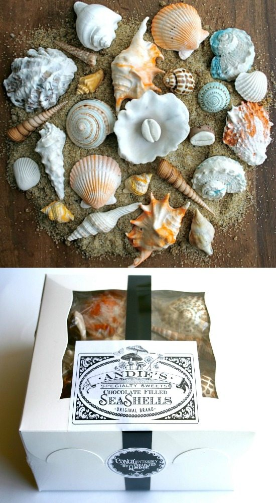 Seashell Chocolate Candy Gift