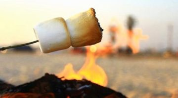 Mmmm… Smores! How to Roast Marshmallows over a Beach Bonfire & Make Smores