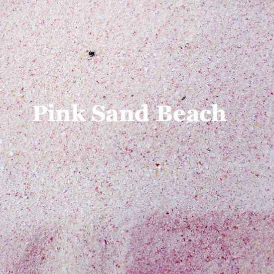 Pink Sand Beach Close up Photograph