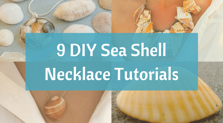 How to Make your Own Seashell Jewelry - 9 DIY Shellicious ...