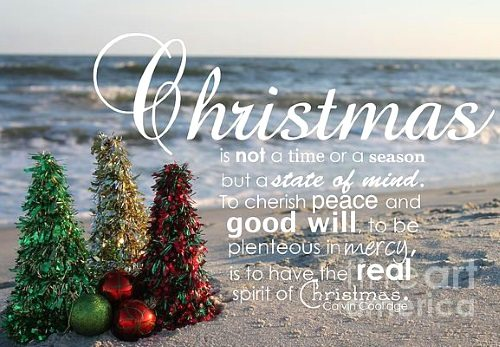 Christmas In Florida Quotes.Christmas On The Beach 28 Crazy Cute Christmas Photo Card