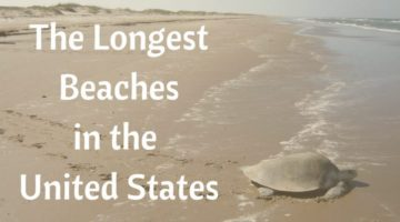 Beaches in the US where you Can Walk for Miles and Miles