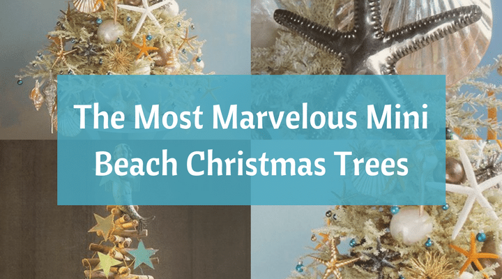 The Most Marvellous Mini Beach Christmas Trees by Tree Decorator Darryl Moland