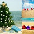 Beach Christmas Cards Photo Ideas