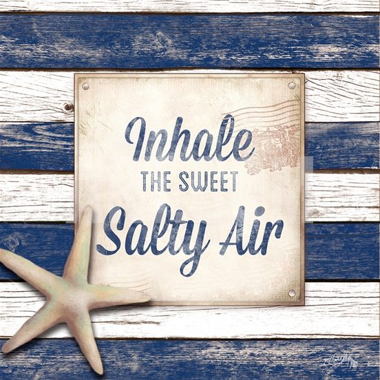 Beach Sign Salty Air