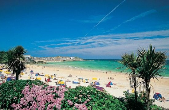 Palm Tree Beach UK St Ives Cornwall