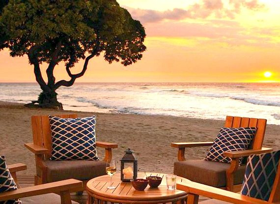 Beach Tree Bar Hawaii Best Bar