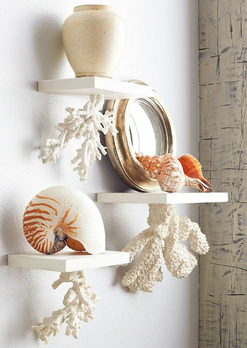 Floating Coral Shelves
