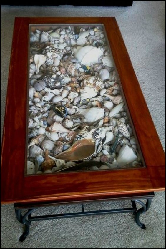 seashell filled coffee table